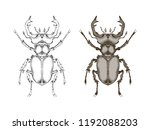 vector illustration with hand...   Shutterstock .eps vector #1192088203