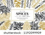 culinary herbs and spices... | Shutterstock .eps vector #1192099909