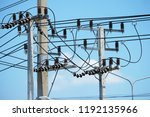 electric line background   Shutterstock . vector #1192135966