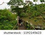 chonburi thailand 06 may 2018   ... | Shutterstock . vector #1192145623