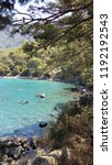 mediterranean forest sea coast  | Shutterstock . vector #1192192543
