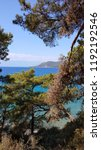 mediterranean forest sea coast  | Shutterstock . vector #1192192546