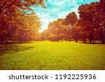 vintage color style of... | Shutterstock . vector #1192225936