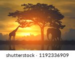 Silhouette Giraffe And Elephan...