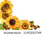Watercolor Sunflowers And ...