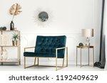 golden decorations and... | Shutterstock . vector #1192409629