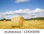 haystacks on a field | Shutterstock . vector #119243050