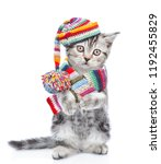Stock photo cute kitten wearing a scarf and warm hat with pompon isolated on white background 1192455829