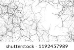 black and white stripes in... | Shutterstock .eps vector #1192457989