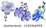 watercolor blue flax flowers.... | Shutterstock . vector #1192466599