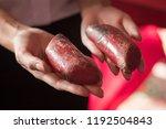 asian woman hand holding yin... | Shutterstock . vector #1192504843
