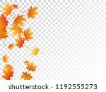 maple leaves vector  autumn... | Shutterstock .eps vector #1192555273