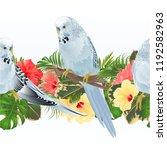 tropical border seamless... | Shutterstock .eps vector #1192582963