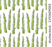 seamless pattern with asparagus ... | Shutterstock .eps vector #1192609003