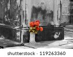 bunch of flowers at a new... | Shutterstock . vector #119263360