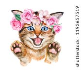 Stock photo kitten in a flower wreath with roses crown with pink roses and spring flowers isolatedon a white 1192657519