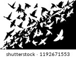 silhouette of a flock of flying ... | Shutterstock .eps vector #1192671553