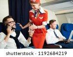 portrait of smiling flight... | Shutterstock . vector #1192684219
