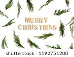 pattern made of conifer tree... | Shutterstock . vector #1192751200
