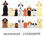 cute dogs looking up and down...   Shutterstock .eps vector #1192818559