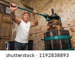 grape harvest  old winemaker... | Shutterstock . vector #1192838893