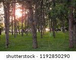 city park on sunny afternoon. | Shutterstock . vector #1192850290