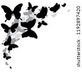 black butterfly  isolated on a... | Shutterstock .eps vector #1192897420