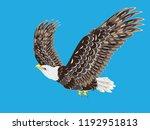 cartoon stylized bald eagle... | Shutterstock .eps vector #1192951813