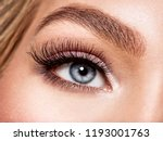 macro shot of young  woman's... | Shutterstock . vector #1193001763