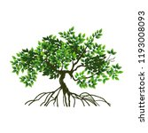 Tree And Roots Vector...