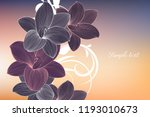 abstract  hand drawn floral... | Shutterstock .eps vector #1193010673