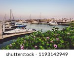 september 12th  2017   al hamra ... | Shutterstock . vector #1193142949