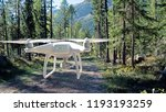 A Drone Hovers On A Woodland...
