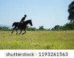 horse and jockey outdoor  | Shutterstock . vector #1193261563