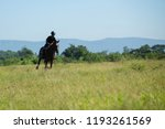 horse and jockey outdoor  | Shutterstock . vector #1193261569