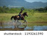horse and jockey outdoor  | Shutterstock . vector #1193261590