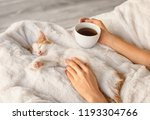 Stock photo woman with cute little kitten drinking tea at home 1193304766