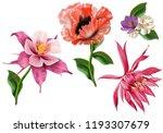 poppy flowers. seamless... | Shutterstock . vector #1193307679