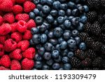 background of berries of juicy... | Shutterstock . vector #1193309479