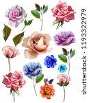 flowers are full of romance the ... | Shutterstock . vector #1193322979
