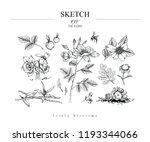 sketch floral botany set.... | Shutterstock .eps vector #1193344066