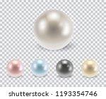 vector set of beautiful... | Shutterstock .eps vector #1193354746