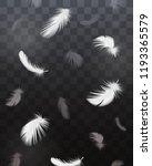 black and white feathers set | Shutterstock .eps vector #1193365579