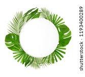 frame made of green tropical...   Shutterstock . vector #1193400289