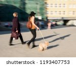 women walking with a dog down... | Shutterstock . vector #1193407753