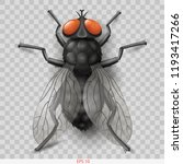 realistic insect fly. 3d vector ... | Shutterstock .eps vector #1193417266