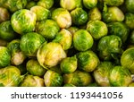 fresh brussles sprouts | Shutterstock . vector #1193441056
