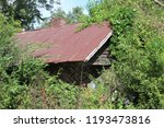 old home place being reclaimed... | Shutterstock . vector #1193473816