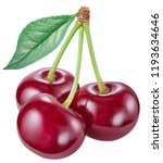 three cherries with cherry leaf ... | Shutterstock . vector #1193634646