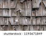 wooden shake shingles are on... | Shutterstock . vector #1193671849